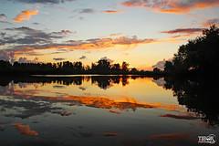 Biesbosch NP (morbidtibor) Tags: nederland netherlands holland dordrecht biesbosch wetlands tidalarea tidal getijdegebied sunset