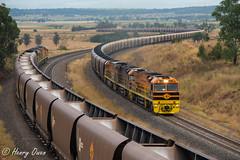 Company Cross (Henry's Railway Gallery) Tags: xrn009 xrn010 gwu007 xrnclass gwuclass ge diesel goninan ugl c44aci gwa geneseeandwyomingaustralia coaltrain freighttrain rv108 rv189 ravensworth minimbah whittingham