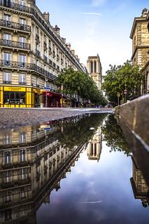 Notre-Dame de Paris - yellow corner