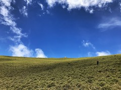 Chiaming lake alpine meadow 嘉明湖畔草原 (qqazwws18) Tags: iphone7 iphone 台灣山岳 登山 嘉明湖 chiaminglake trekking travel taiwan sonya6000 sony