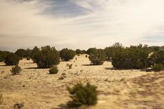 SedonaVacation_May2018-1693 (RobBixbyPhotography) Tags: arizona grandcanyon sedona vacation railroad tour train travle