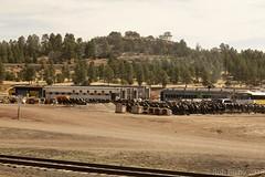 SedonaVacation_May2018-1686 (RobBixbyPhotography) Tags: arizona grandcanyon sedona vacation railroad tour train travle