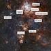 Around the Tarantula Nebula, annotated