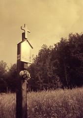 (aandred) Tags: smena8m smiena kodacolor200 crossprocess devotion kapliczka beskidżywiecki beskidy