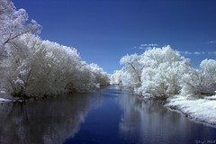 River From Bridge (tjw.astrophoto) Tags: r72 infrared river tree full spectrum