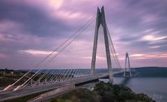 Connection (NazliAktuglu) Tags: bridge köprü istanbul türkiye turkey turchia longexposure dramaticsky purple sky architecture yavuzsultanselimköprüsü 3köprü