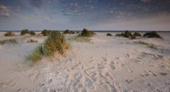 (heiko.harders) Tags: sea dunes landscape seascape nature outdoors sand grass sunrise clouds