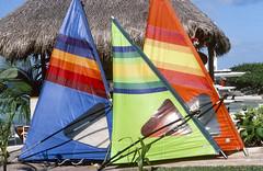 Sails (photographyguy) Tags: cancun sails beach kodachrome64 filmphotography mexico sailboard palapa palms