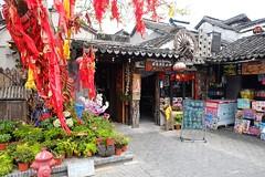 (lhongchou's photography) Tags: zhejiang jiangnan china xt1 fuji fujifilm fuji1855f284