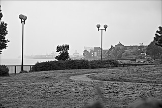 In the Mist Monochrome