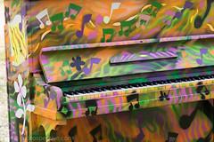 2017 - Open Square Garden - Saturday - 06 - Barnard Park -7209 (Out To The Streets) Tags: 2017 20170617 barnardpark europe islington june2017 london opengardensquares opengardensquares2017 opengardensquares2017sunday uk unitedkingdom colourful graffiti instrument instruments piano redrospectivecom