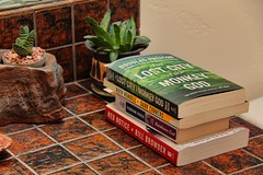Toilet Reading (David K. Edwards) Tags: houseplant succulent reading book paperback tradepaper fiction nonfiction overpriced toilet wc crapper john head flush dump crap shit feces dung turd waste brown excrete excretory defecate defecatory strain grunt elimination expulsion cloaca poop fart pooper smell stench reek odor malodorous bowel colon diarrhea constipation laxative suppository tory opal boulderopal australia tile bathroom honduras moscow london sandiego