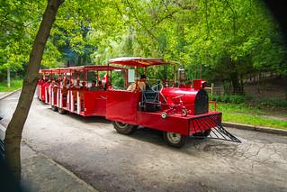 High Park Train