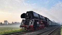 Dampf und Nebel am Morgen - Steam and fog in the morning (Stefan Markus) Tags: dr deutschereichsbahn sigma1750mmf28exdcos d5300 nikon sonderzug westfalendampf 01519 deutschland nordrheinwestfalen menden bösperde