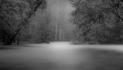Calling of the Spirit (JDS Fine Art Photography) Tags: woods forest spirit spiritual light illumination insprational longexposure water bw monochrome eerie spooky stormy