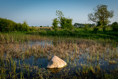 Evening in May (hanschristian_nielsen) Tags: fotoklub lolland lyttesholm denmark lake stone plant tree sky water rush windmill grass fence