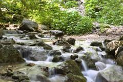Wasserfall/ Vízesés / Waterfall (A. Meli) Tags: vízesés waterfall wasserfall sommer summer szabadban nature natur nyár természet természetben outdoor trees rocks wald holz baum felsen