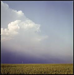 Vor dem Sturm (Konrad Winkler) Tags: himmel wolken licht feld horizont sommer fujipro160ns hasselblad503cx epsonv800 mittelformat 6x6