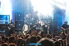 cityfest_sobota-57