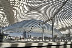 Gare de Liège-Guillemins (hha_photo) Tags: bahnhof lüttich eisenbahn railway gare architecture liegeguillemins liege architektur calatrava belgium structure strukturen railwaystation