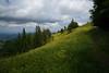Schnebelhorn (Canton of Zurich) (Toni_V) Tags: m2408019 rangefinder digitalrangefinder messsucher leicam leica mp typ240 type240 28mm elmaritm12828asph hiking wanderung randonnée escursione schnebelhorn kantonzürich switzerland schweiz suisse svizzera svizra europe landscape landschaft zürioberland zürcheroberland ©toniv 2018 180602