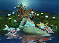 Like Moonlight (Vega_Arida) Tags: blueberry colorful water reflection siren sea waterlily koi fish hair dali branch spring beach mermaid moonlight