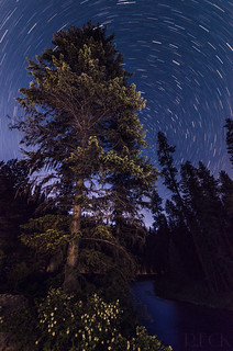 Stars Above Middle Fork Payette River Idaho