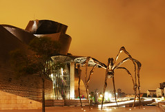 Maman ! (Le.Patou) Tags: espagne spain españa basque euskadi vasco bilbao nuit night noche musée museum museo gugenheim sculpture escultura bronze bronce araignée spider maman mamy mamá fz1000