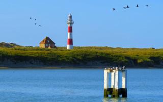 Postcard from Nieuwpoort
