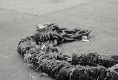 Street snake (ianmiller6771) Tags: urban streetphotography chain padlock blackwhite monochrome rope texture pavement fuji 35mm litter metal cigarettebutt bw streetphotographyuk