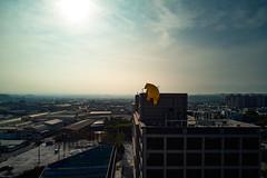 屋頂上有熊|Chiayi (里卡豆) Tags: 嘉義 臺灣省 台灣 tw mavicair dji 大疆 空拍機 mavic air drone taiwan