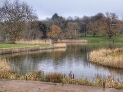 Hampstead Heath, London, England (PaChambers) Tags: hampstead heath hampsteadheath london park green uk england urban winter 2018 pond
