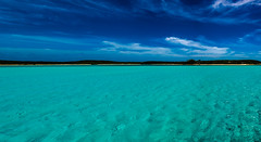Farmers Caye pano (b.campbell65) Tags: exumas adventure aquatic background bahamas beautiful biodiversity biology blue caribbean colorful conservation environment exploration fin fish island life marine ocean paradise reef salt saltwater sand scuba sea sealife seascape species travel tropical tropicalisland tropics vacation water wild wildlife nikon d850