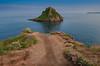 Thatcher Rock, Torquay (simondayuk) Tags: coast coastal coastline torquay brixham devon torbay uk sea seascape rock flowers coastalpath nikon d500 seagull seagulls waves ocean seaside