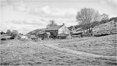 Upper Teesdale . (wayman2011) Tags: lightroomfujifilmxpro1 wayman2011 bwlandscapes mono rural farms pennines dales teesdale cronkley countydurham uk