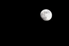 Full Moon (Jansha Crazy) Tags: