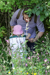 Edinburgh Botanic Gardens BioBlitz 2018 -174 (Philip Gillespie) Tags: • edinburgh royal botanic gardens 2018 big bioblitz bio blitz kids children men women man woman people fun faces smiles water wet insects bugs moths spiders legs arms eyes hats grass trees bushes plants short pool sun sky pond lilly wings park nature colour green blue red yellow orange purple science teach record check house cottage photo photography canon 5dsr rbgenature thebotanics dipping worms birds bigbotanicsbioblitz