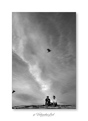 Brothers, Lalbaugh (vedanshulad) Tags: landscape people sky dramatic bird blr bangal bangalore fall black white blackandwhite blacknwhite art framed framedsky