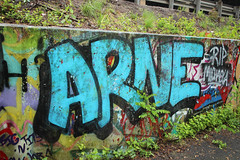 Arne (NJphotograffer) Tags: graffiti graff new jersey nj bumtrail riverwalk arne