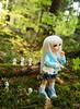 [May of Dolls 25/31] - Ghost ♥ (SunShineRu) Tags: ltf littlefee lishe fairyland bjd yosd ball jointed doll dolls may ghost ghosts mononoke hime princess ghibli spirit kodama cute forest nature