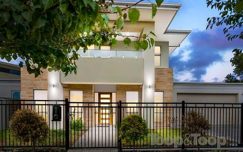 58 Highfield Avenue, St Georges SA