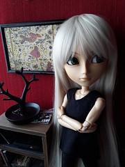 Yorik Medevkin (Lunalila1) Tags: doll groove taeyang rayne yorik medevkin viii
