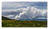 Le printemps (Ylliab Photo) Tags: ylliabphoto ylliab paysage photographie landscape lepaysagesimplement laphotographiesimple mountain montagne french france flickr
