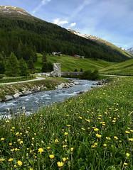 The new bridge (quanuaua) Tags: ifttt 500px livigno spöl river alps alpine village flowers green sunset valtellina italy mountains mountain range