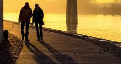 L'eldorado arlésien (brunomalfondet) Tags: couple chien lumièredusoir coucherdesoleil arles quaisdurhône surlerhone fleuve doré enpromenade