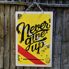 Double the demotivation! (Never give up) (id-iom) Tags: art brixton cool demotivated demotivation demotivator england graffiti idiom inspirational inspire lettering london maybenextweek motivated motivational motivator nevergiveup paint panel poster procrastination quote spray spraypaint stencil text today todayistheday uk urban vandalism wood