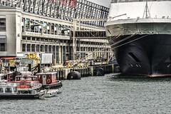 Dockside--South Boston (PAJ880) Tags: ss veendam cruise ship mooored boston harbor flynn cruiseport dockside equipment supplies workboats
