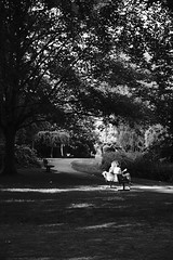 Friends (michaelwilliams58) Tags: xt20 fujifilm fuji acros blackandwhite bw light parkbench bench friends priorypark essex southend southendonsea