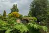 The Mill Garden, Warwick (DougRobertson) Tags: millgarden warwickshire warwick river bridge flowers