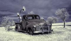 Chevrolet Pickup Truck, Circa 1950 (unknown quantity) Tags: sky clouds fence shadows sculpture baretrees rust pickuptruck weathered grass exposedmetal oxidation horizon cloudsstormssunsetssunrises hss